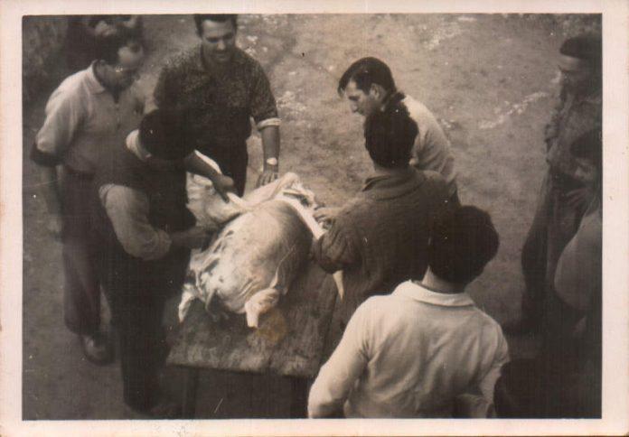 EN DIA DE SES MATANCES - 1962