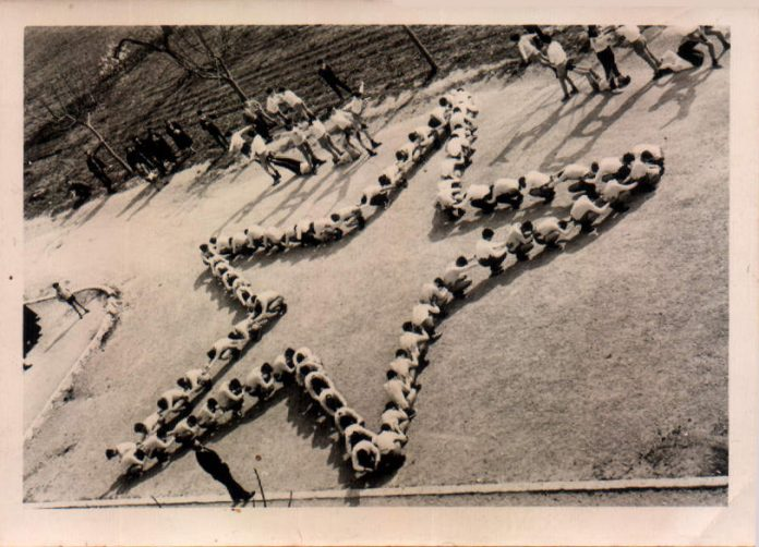 FESTIVAL GIMNASTIC - 1960