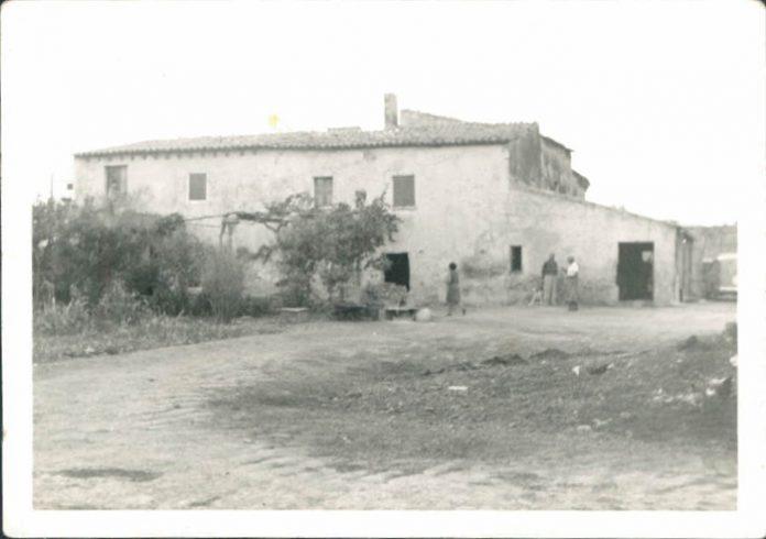 CARDONA-ANTONIO-MARI_00139