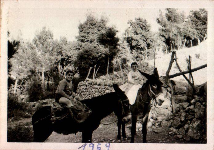 NINS EN SOMERA - 1969