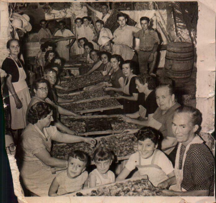 SAQUER - 1950