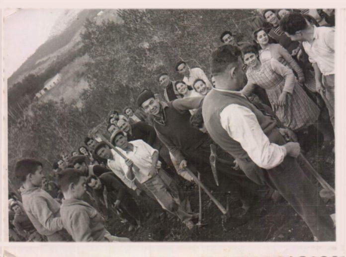 MONTISION - 1954