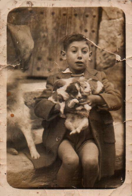 JUAN MARTORELL CON MANADA DE PERRITOS - 1946