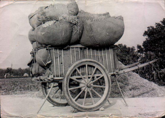 SON VINAGRELLA - DAMUNT S´ERA - 1950