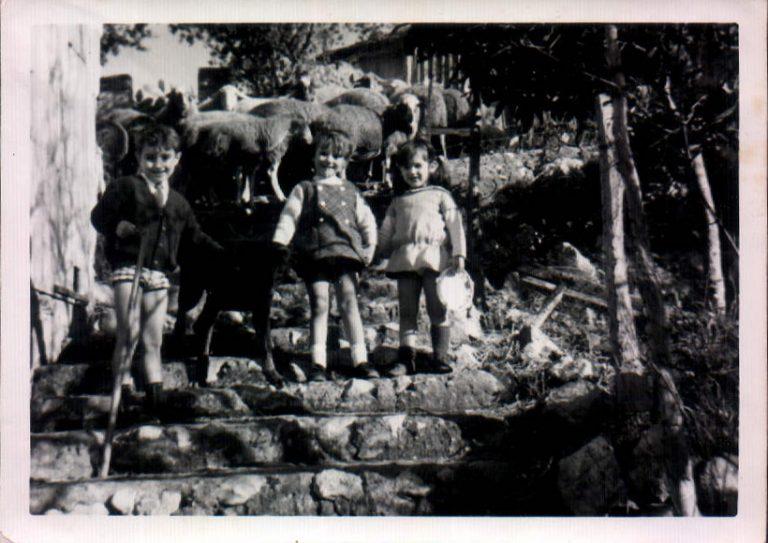 Cosins a finca rústica – 1972