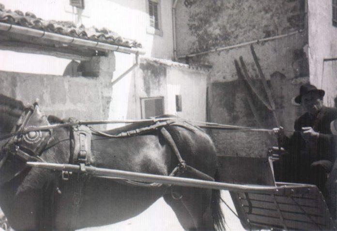 SEÑOR EN CARRO CABALLO - 1965