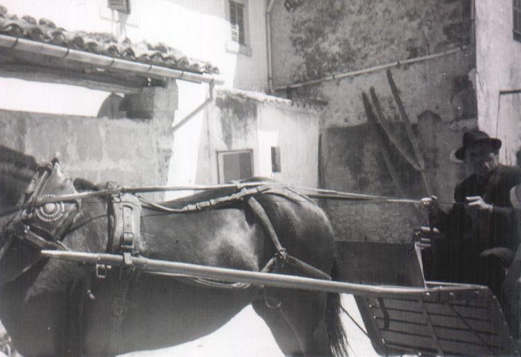 Señor en carro con caballo – 1965